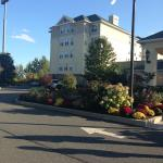 Φωτογραφία: Homewood Suites Holyoke-Springfield/North