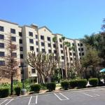 Foto de Staybridge Suites Anaheim - Resort Area