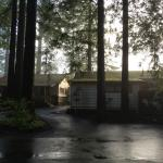 Morning cabins