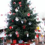 holiday tree in old town