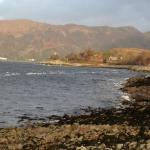 Loch Linnhe Waterfront Lodges resmi