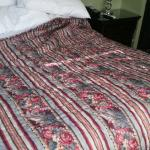 Quilt does not go with room. Mayne a older bed and breakfast