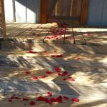 I ordered the rose petals and the staff made a trail into our cabin.