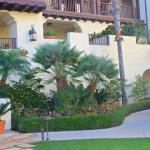 Immaculately maintained Spanish-style exterior