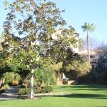 Grounds and landscaping