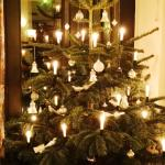 Advent im Kipping
