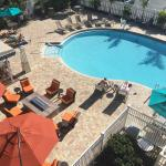 Bilde fra BEST WESTERN PLUS Siesta Key Gateway