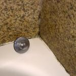 Bath Shower - black mold