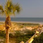 The Ritz-Carlton, Amelia Island照片