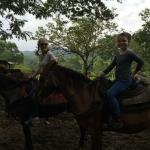Mountain Equestrian Trails Foto