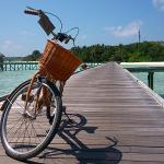 Gili goes biking