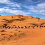 Original Morocco Tours - Day Tours