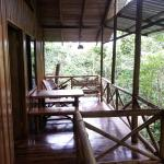 Tree Houses Hotel Costa Ricaの写真