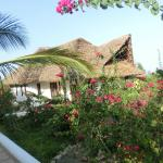 Photo of Kasha Boutique Luxury Hotel