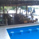 pool and bar/restaurant