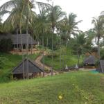 Foto de Kinasi Lodge