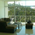living room area, saw parrots fly by!