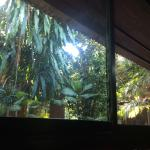 View from the bed.