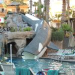 Whale Slide at our Resort
