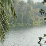 Looking across the Periyar River