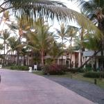 Photo of Paradisus Punta Cana