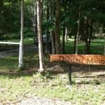 Daintree Manor B&B의 사진