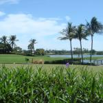 Foto de Resort at Longboat Key Club