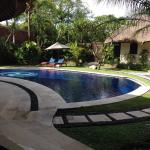 Pool from the lounge