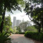Singapore's High Rise from Fort Canning Park