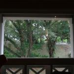 Our view of Fort Canning Park from our room