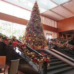 Impressive Christmas Tree at the Lobby.