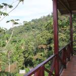 Foto de Rio Magnolia Nature Lodge
