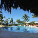 Pool Dreams La Romana