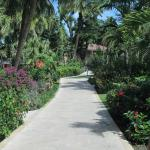 Caribbean side of the resort - walk to our room.