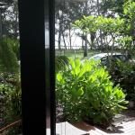View of the Ocean and Gardens from our Room