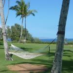 on the grounds at the Ritz-Carlton Kapalua