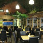 The Yellow Frog Cafe