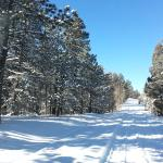 Manitou Springs Adventures, High Country Excursions -  Tours