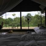 Foto di Honeyguide Tented Safari Camps