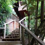 Stairs to the Hill Rock Villa
