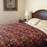 Photo de Oasis Guest House Bed and Breakfast