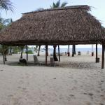 Available beach loungers out under the thatched roof