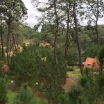 Φωτογραφία: Hotel Bosque Escondido