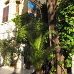 Photo of La Colombe d'Or