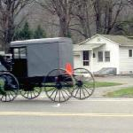 Amish Buggy Passing By