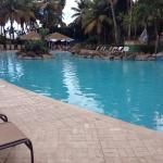 The adult pool area