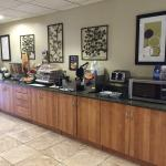 Billede af Microtel Inn & Suites by Wyndham Saraland/North Mobile
