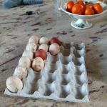 Eggs in the kitchen