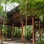 Gingah Treehouse