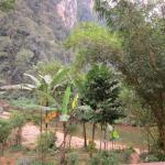 Photo of Khao Sok River Lodge